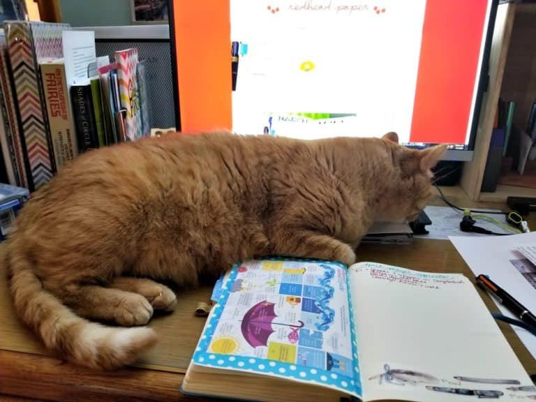 An orange cat, Eustace, lies on a desktop over a Bullet Journal spread.